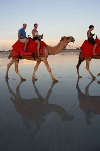 africa-morocco-camel-ride-travel-producer