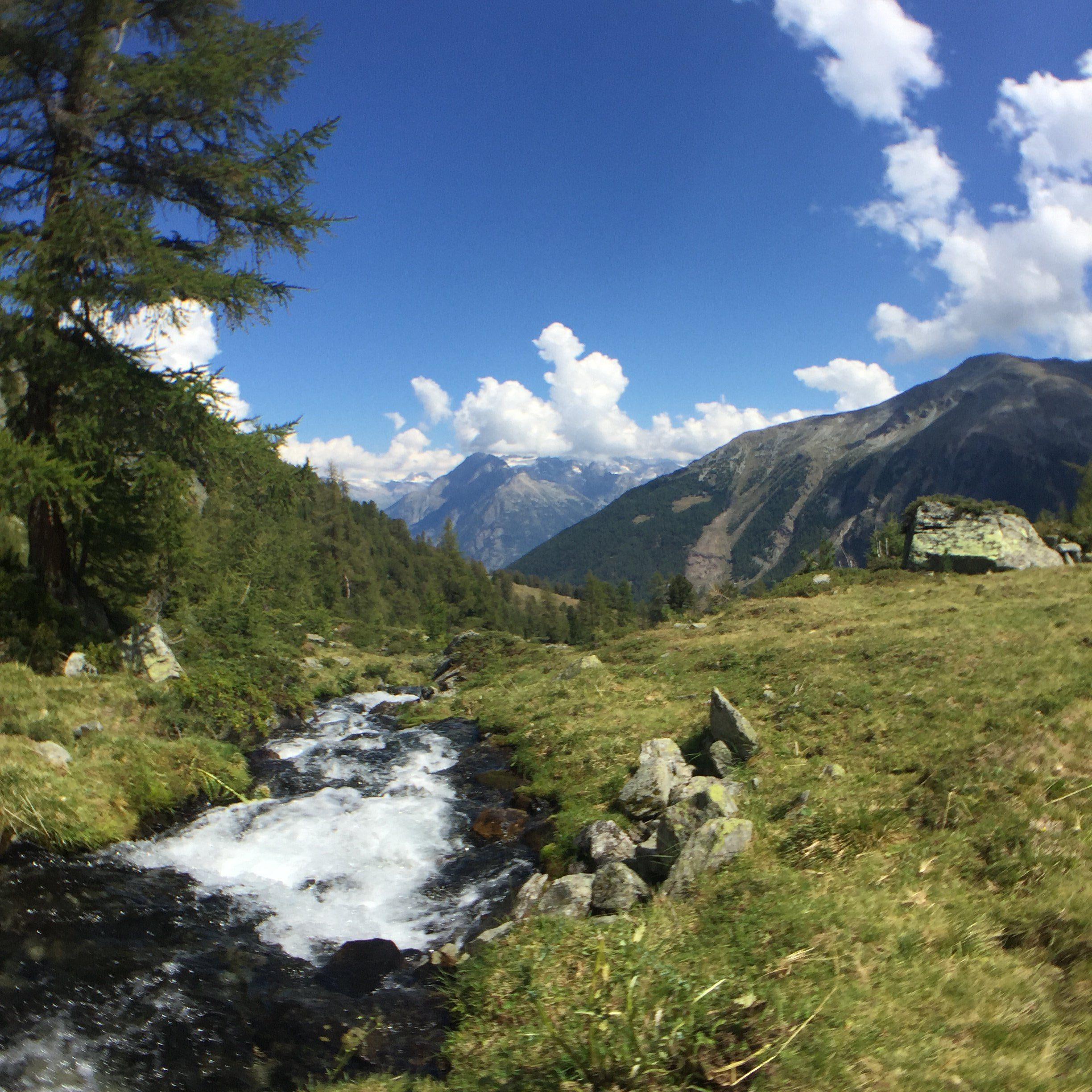 Swiss Turtmann valley